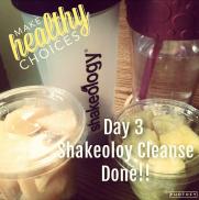 day 3 shake