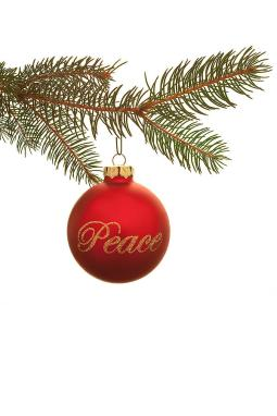 christmas-peace-andrew-soundarajan.jpg